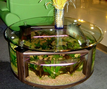 coffee-table-aquarium-design-ideas2